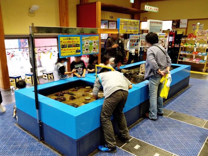 鳥取港かにっこ館